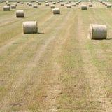 Bales of hay in field. Bales of hay randomly placed in field Stock Image