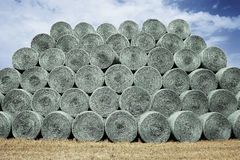 Bales of hay on the field Stock Images