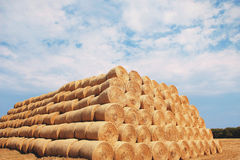 Bales of hay on the field Stock Photography