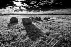 Bales of Hay in a Field - Black and White Royalty Free Stock Photography
