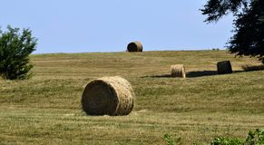 Bales of hay in field, Georgia, USA Royalty Free Stock Photos