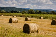 Bales of hay royalty free stock photo
