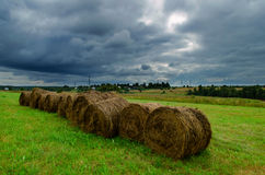 Bales of hay on field Stock Images