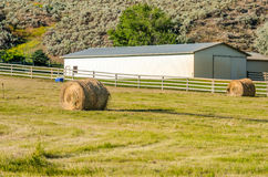 Bales of Hay in a Field royalty free stock photo