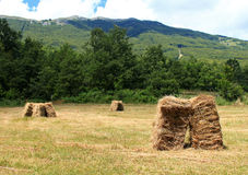 Bales of hay in the foreground in rural field Royalty Free Stock Photos