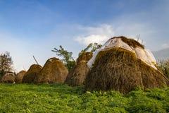 Bales of hay haystacks stacks heyricks Stock Images