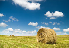 Bales of hay in a large field. Royalty Free Stock Photos