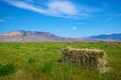 Farmland Hay is Gathered Royalty Free Stock Photos