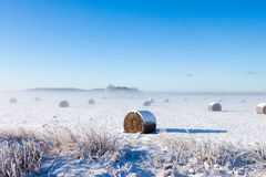 Bales of hay laying in snow Stock Images