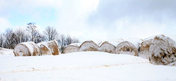 Bales of hay laying in the snow on farm field Royalty Free Stock Photography