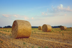 Bales of hay lying in the fields. Sunset with bales of hay lying in the fields Stock Images