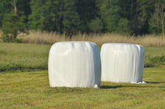 Bales of hay lying on the meadow during haymaking. River Valley, meadows. Bales of hay lying on the meadow during haymaking. River Valley surrounded by meadows Royalty Free Stock Image