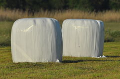 Bales of hay lying on the meadow during haymaking. River Valley. Surrounded by meadows Royalty Free Stock Photos