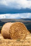 Bales of hay on meadow against the sky V2 Royalty Free Stock Photography