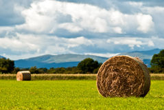 Bales of hay on meadow against the sky V3. Hay bales on a field with clouds in background Royalty Free Stock Photography