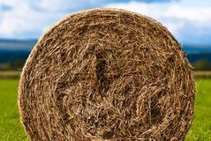Bales of hay on meadow against the sky V4 Stock Image
