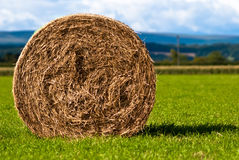 Bales of hay on meadow against the sky V5. Hay bales on a field with clouds in background Stock Image