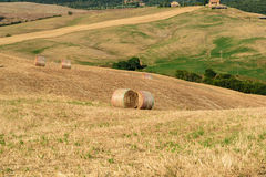 Bales of hay in the middle of a field in Val d'Orcia, Tuscany. Italy royalty free stock photos