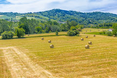 Bales of hay on the mown fields. Yellow round bales of hay spread in cultivated fields now mown in the Italian countryside royalty free stock image