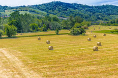 Bales of hay on the mown fields. Yellow round bales of hay spread in cultivated fields now mown in the Italian countryside royalty free stock photography