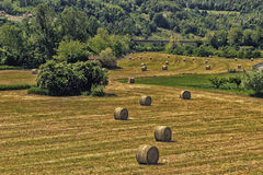 Bales of hay on the mown fields. Yellow round bales of hay spread in cultivated fields now mown in the Italian countryside royalty free stock photos