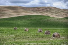 Bales Of Hay In The Palouse Stock Photography