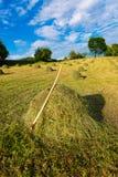 Bales of hay ready handmade with rake Stock Photo