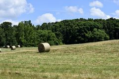 Bales of hay in rural Georgia Royalty Free Stock Images