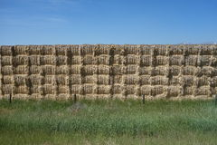 Bales of hay stacked neatly at a farm in idaho Stock Image