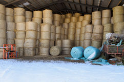 Bales of hay stored for winter Royalty Free Stock Photo