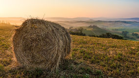 Bales of hay on a summer fields at sunrise in Tuscany. Bales of hay on a summer fields at sunrise stock photo
