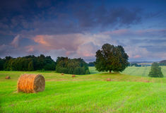Bales of hay at sunset Royalty Free Stock Images