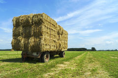 Bales of hay on a trailer standing in the sun Royalty Free Stock Photo