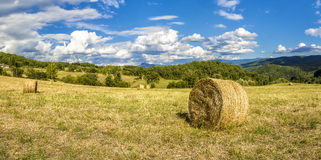 Bales of hay in Tuscany (Italy) Stock Image