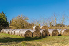 Bales of hay up the sun. In Italy Royalty Free Stock Photos
