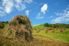 Bales of hay - Val Pusteria, Dolomite - Italy Stock Image