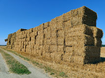 Bales of haystacks stacked as a wall on the field with one bale Royalty Free Stock Image