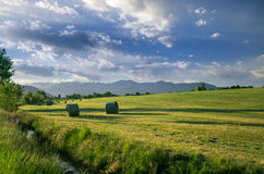 Bales of hey. On a sunset Royalty Free Stock Photos