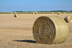 Bales. I rode on my bike and i stopped to take that pic Stock Photos