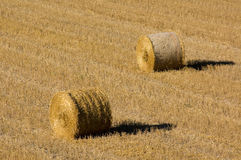 Bales In The Field Royalty Free Stock Photos