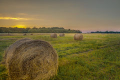 Bales. A minimum of 5 words is the least for a decent description in order to transmit your concept to the viewers Stock Image