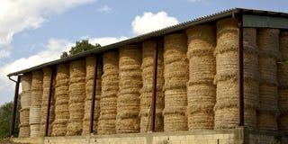 Free Bales Of Hay Royalty Free Stock Photos - 12403758