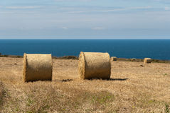 Bales Of Hay In Cornwall Royalty Free Stock Images