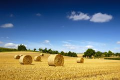 Free Bales Of Straw Royalty Free Stock Photography - 6011467