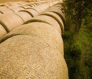 Free Bales Of Straw Stock Image - 6037401