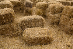 Free Bales Of Yellow Hay Are Lying In The Courtyard Stock Photography - 98302462