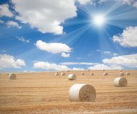 Bales Stock Images