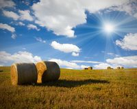 Bales Stock Photography