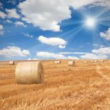 Bales Royalty Free Stock Images