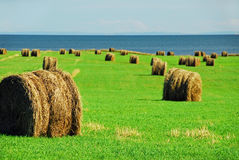 Bales By The Sea Stock Photo
